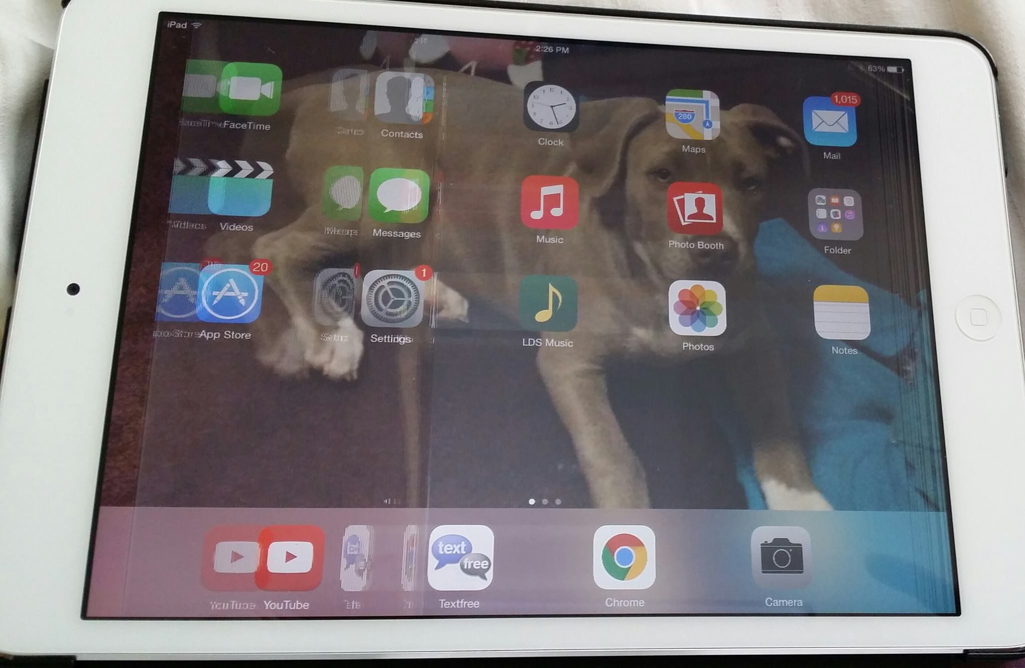 How can i fix my ipad? screen is fuzzy with big gray lines