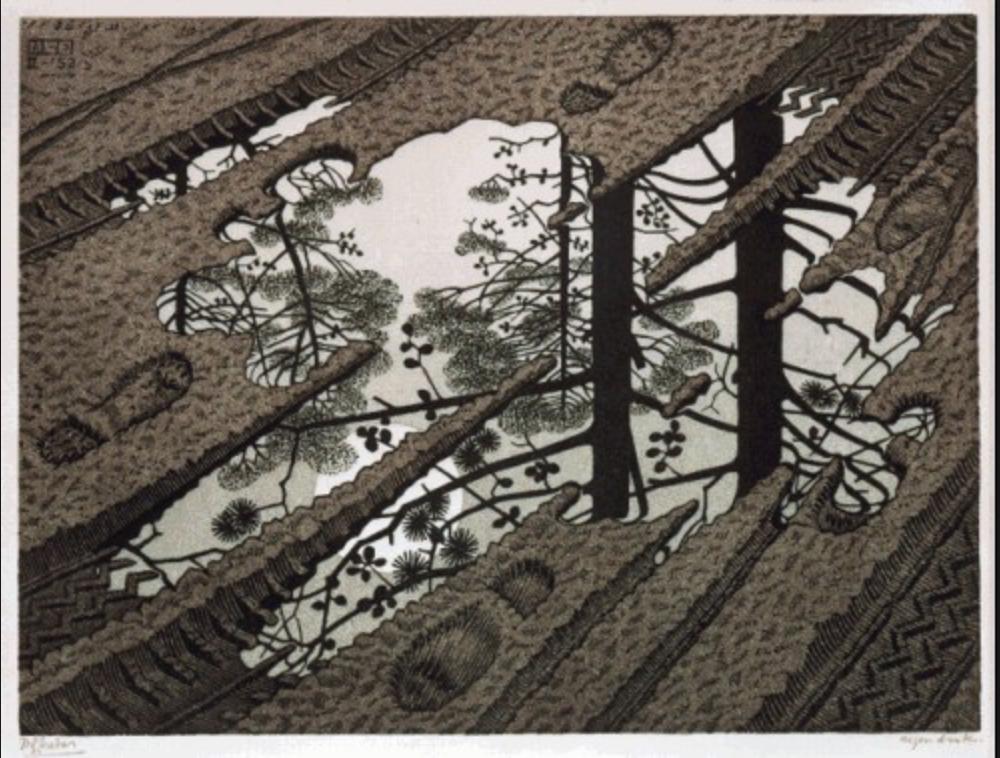 Escher_2d.png