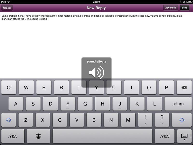 Ipad Has No Sound